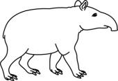 Tapir Clipart